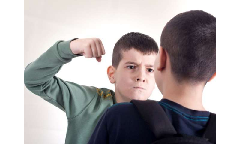 Bullied in 5th grade, prone to drug abuse by high school
