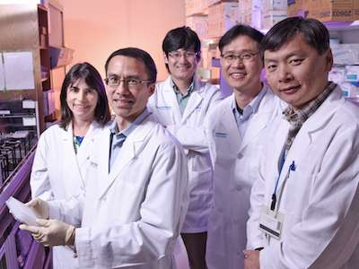 Cancer drug could promote regeneration of heart tissue