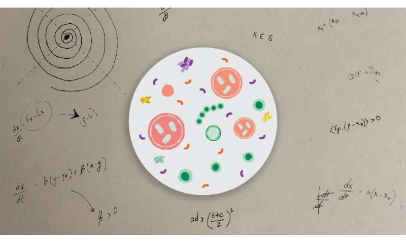 Can math help explain our bodies -- and our diseases?