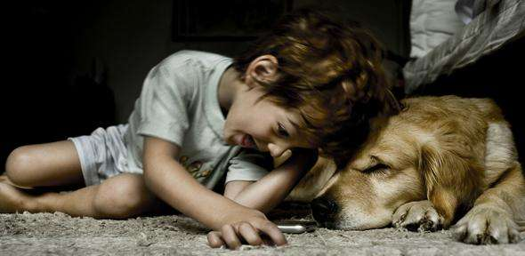 Children get more satisfaction from relationships with their pets than with siblings