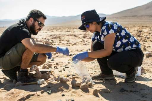 Chile's Atacama desert, like Mars, is hot, and extremely dry, but tiny algae and bacteria that survive there could give clues to