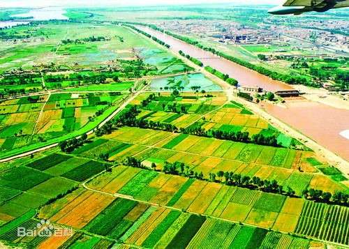 Climatic effect of irrigation over the Yellow River basin
