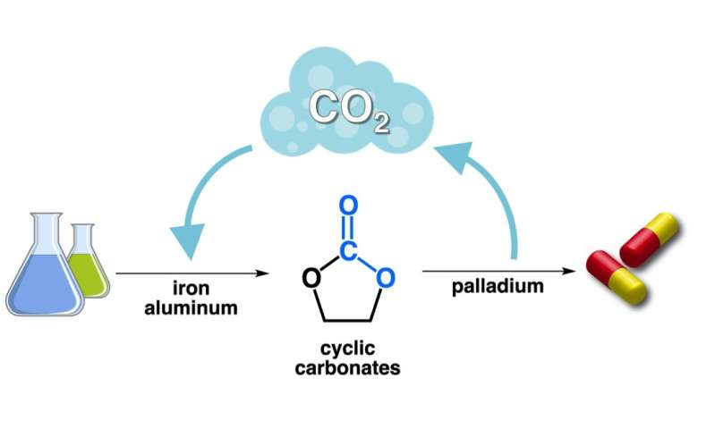 CO2, the philosopher's stone to obtain valuable pharmaceuticals