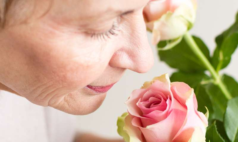 Could olfactory loss point to Alzheimer's disease?