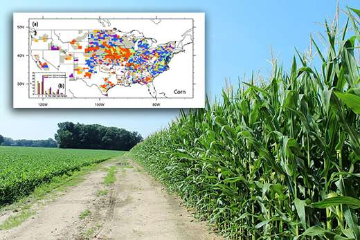 County-by-county variability of bioenergy crop yields in the U.S.
