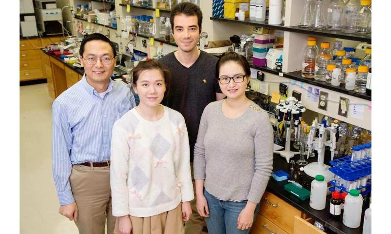CRISPR mines bacterial genome for hidden pharmaceutical treasure