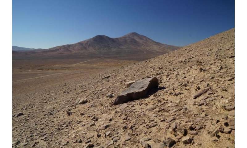 Detecting life in the ultra-dry Atacama Desert