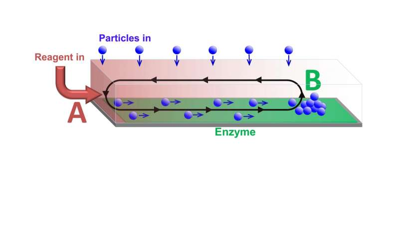 Developing a catalytic conveyor belt