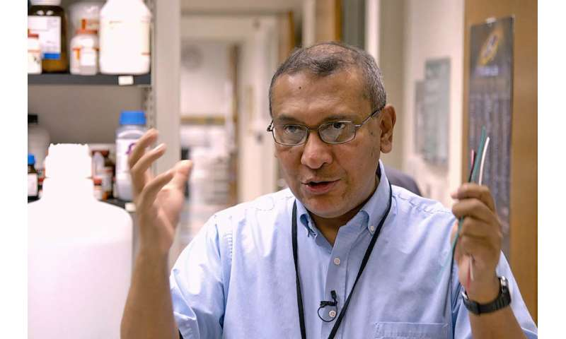 Discovery suggests better way to treat certain prostate cancers, lymphomas
