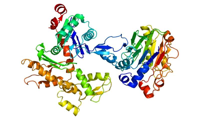 Disease caused by reduction of most abundant cellular protein identified