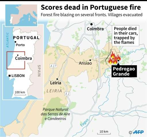 Dozens dead in Portugal forest fires