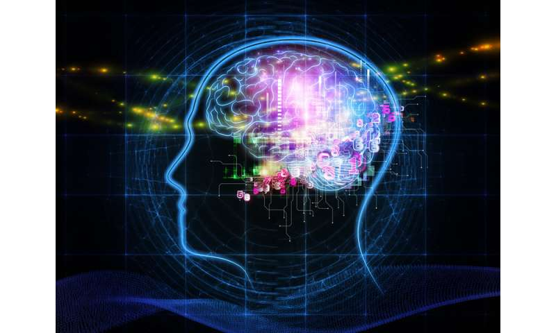 Education does not protect against cognitive decline