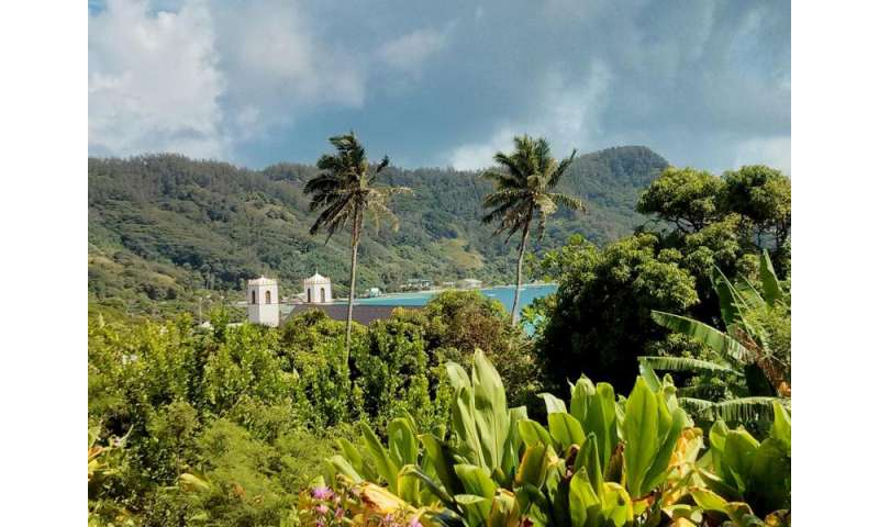 Effects of ozone depletion felt in the Tropics