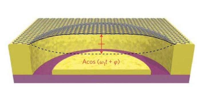 Energy decay in graphene resonators