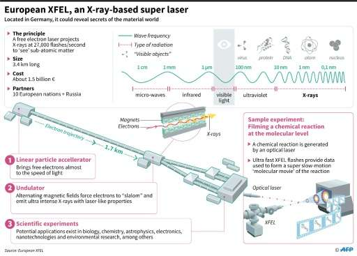 European XFEL, an X-ray super-laser