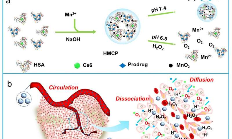 Exploiting acidic tumor microenvironment for the development of novel cancer nano-theranostics
