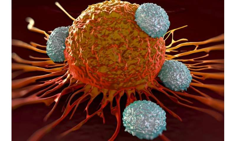 FDA approves cancer drug for personalized immunotherapy approach