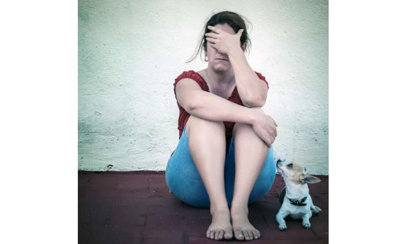 Fears for pets can put abused women at further risk, according to research