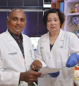 First-in-class drug holds promise for therapy-resistant breast cancer