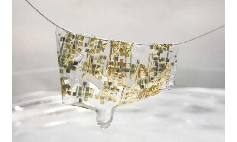 Flexible, organic and biodegradable: Stanford researchers develop new wave of electronics