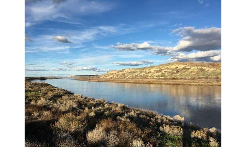 Flowing toward cleaner rivers