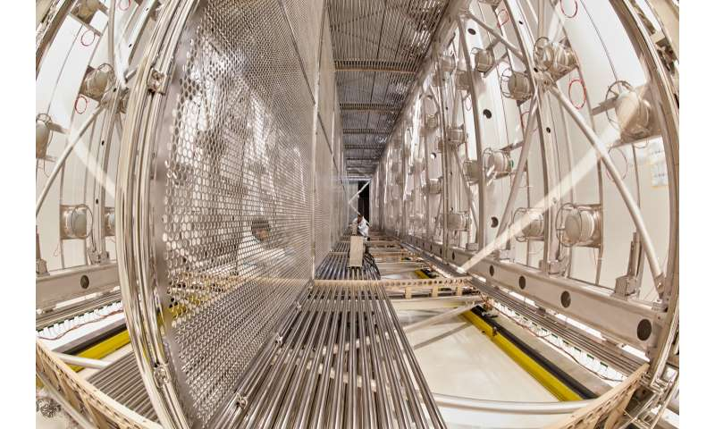 Follow the fantastic voyage of the ICARUS neutrino detector