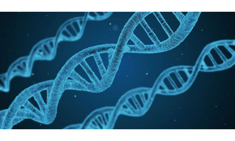 Mgh Study Suggests Genetic Link In >> Largest Ever Study Identifies Gene Regions Associated With Sleep