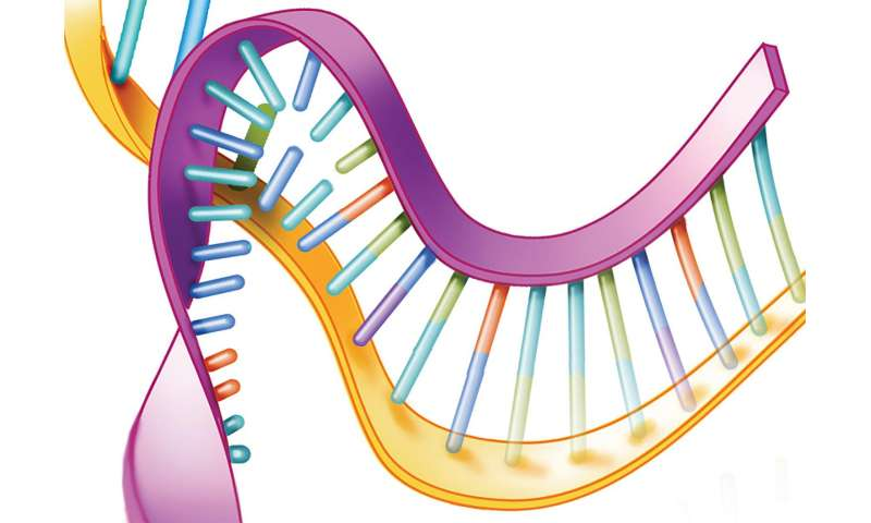 Gene silencing shows promise for treating 2 fatal neurological disorders