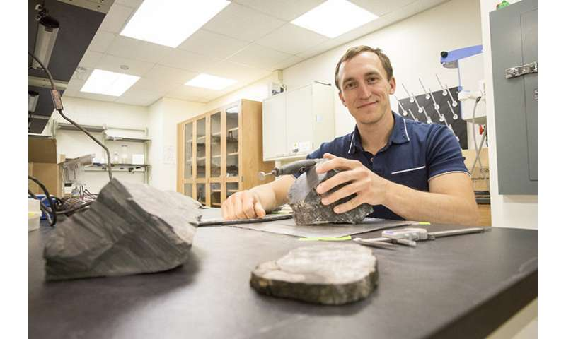 Geologists uncover Antarctica's fossil forests