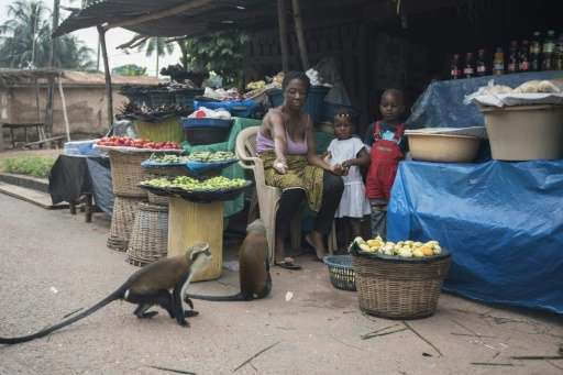 Ghanaian tourism experts now want to see more emphasis on eco-tourism projects like Tafi Atome
