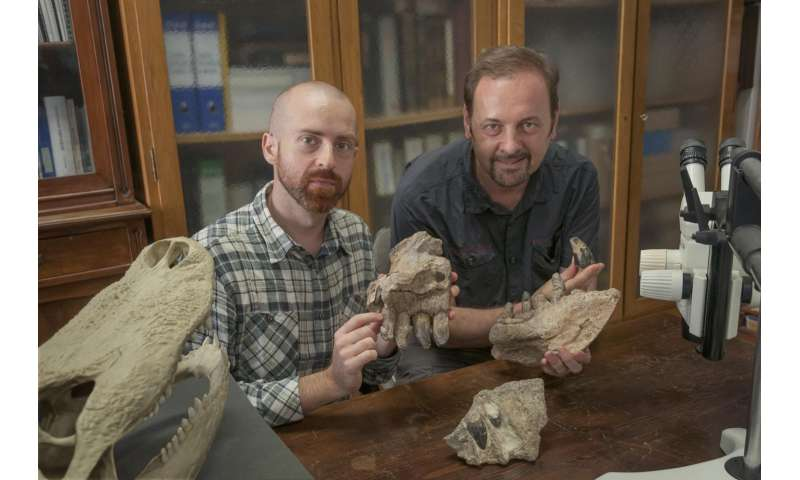 Gigantic crocodile with T. rex teeth was a top land predator of the Jurassic in Madagascar