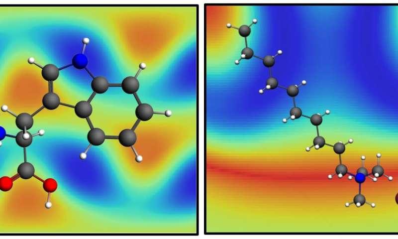 Good vibrations help reveal molecular details