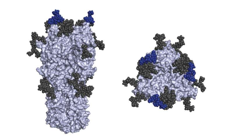 H3N2 mutation in last year's flu vaccine responsible for lowered efficacy