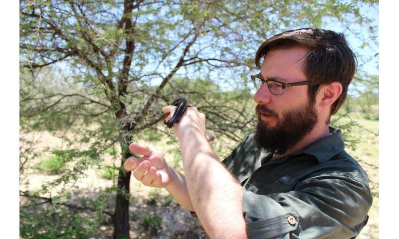 Habitat counts when predators lurk