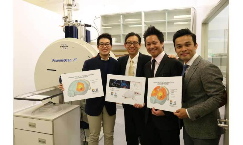 HKU scientists utilise innovative neuroimaging approach to unravel complex brain networks