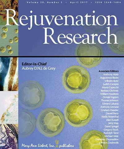 How berberine works to slow diabetes-related cognitive decline in Rejuvenation Research