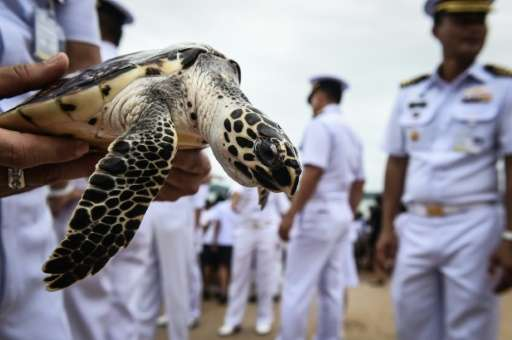 Hundreds of Thai schoolchildren and naval officers sent 1,066 turtles scuttling into the sea on Wednesday in a ceremony aimed at