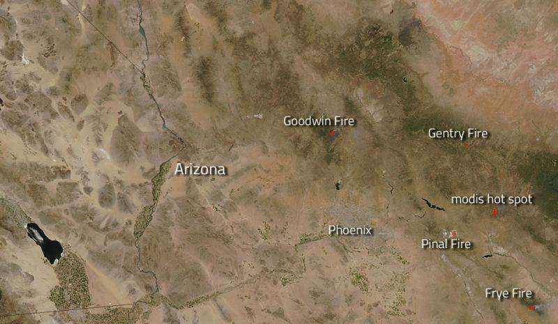 Image: Fires and hot spots in Arizona