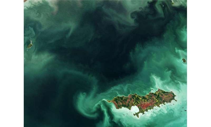 image: Reindeer Island