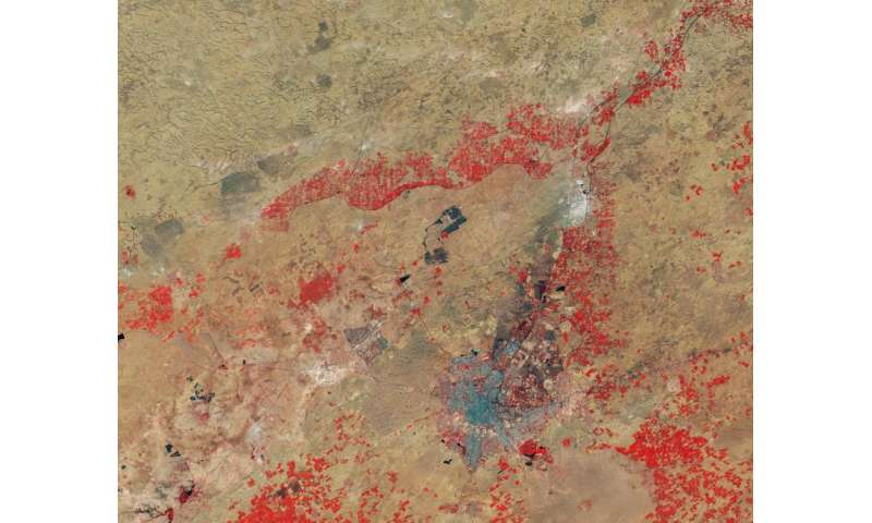 Image: Thar Desert, India