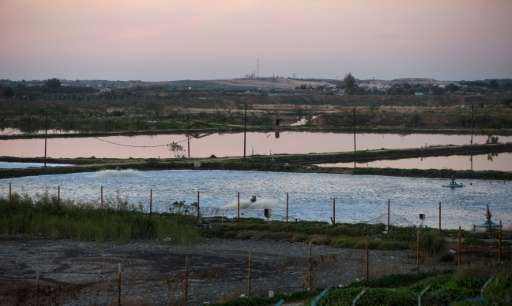 In Beit Lahia, northern Gaza, pools of sewage water pictured in February