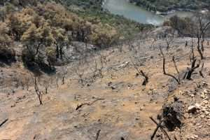Increases in wildfire-caused erosion could impact water supply and quality in the West