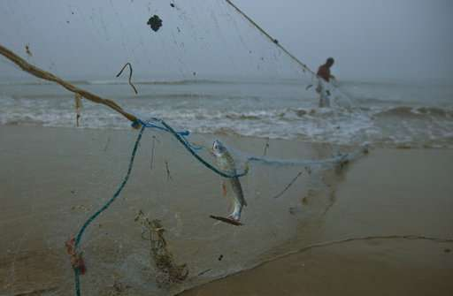 Indian fishermen try new nets for healthier oceans