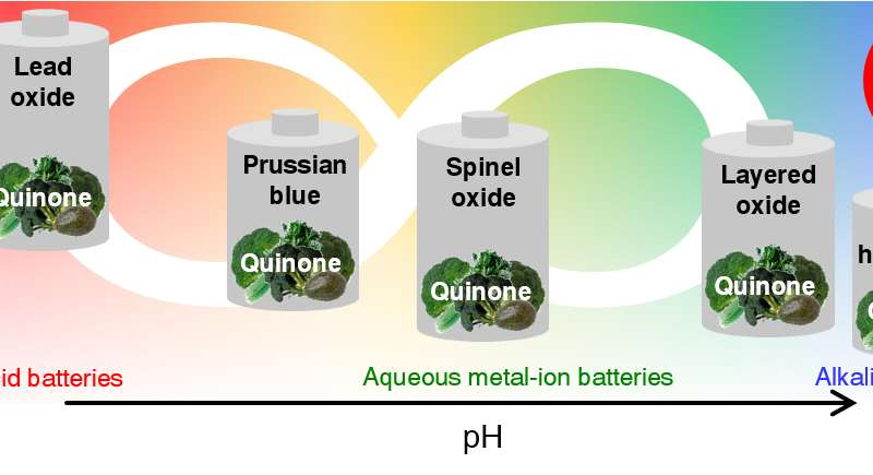 Inexpensive organic material gives safe batteries a longer life