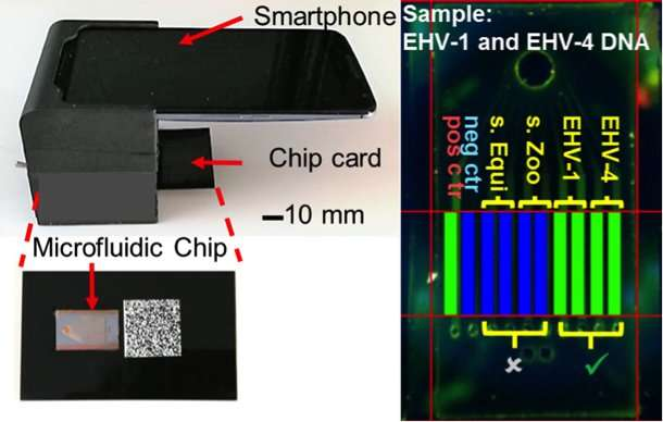 Integrated lab on a chip uses smartphone to quickly detect for Lab on a chip template