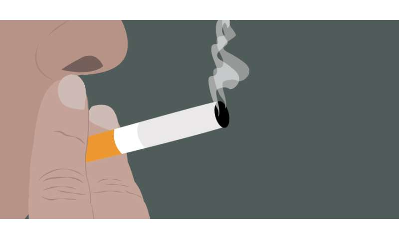 Interactive web tool shows potential impact of tobacco policies