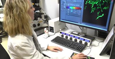 Invasive lung cancer cells display symbiosis -- Key to metastasis