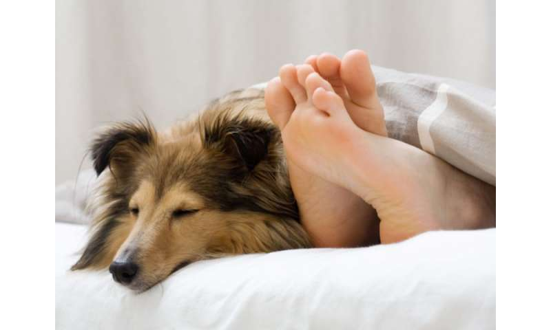 It's time to kick fido out -- of bed, that is