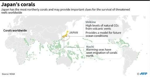 Japan's corals