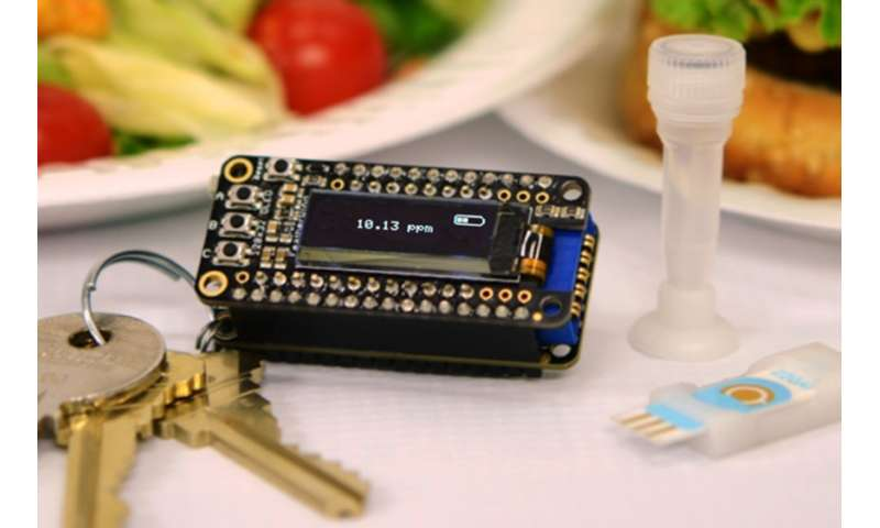 Keychain detector could catch food allergens before it's too late